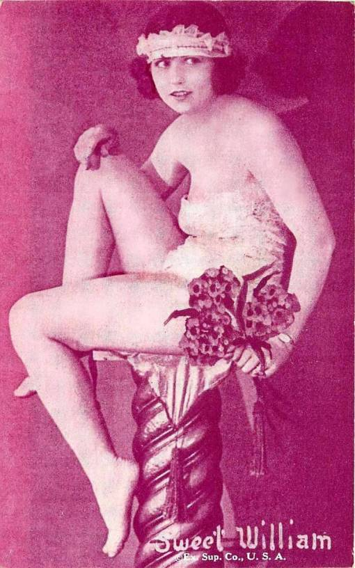 arcade-card-exhibit-supply-company-pin-up-floral-series-sweet-william-1920s