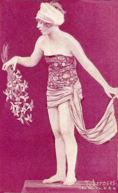 arcade-card-exhibit-supply-company-pin-up-flower-series-tuberoses-1920s (1)